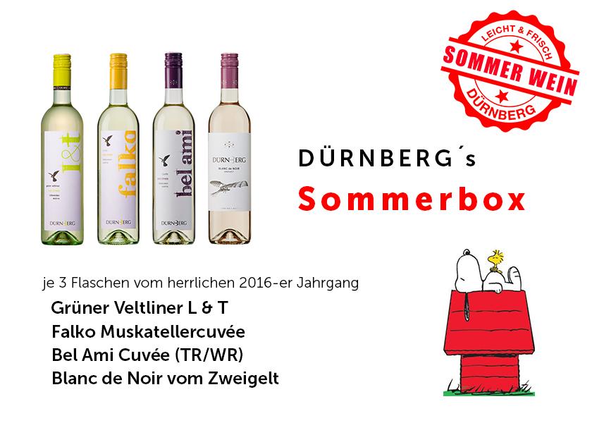 Dürnberg Sommerbox